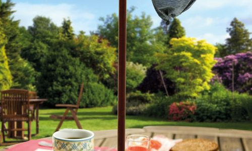 Waspinator afternoon tea in the garden