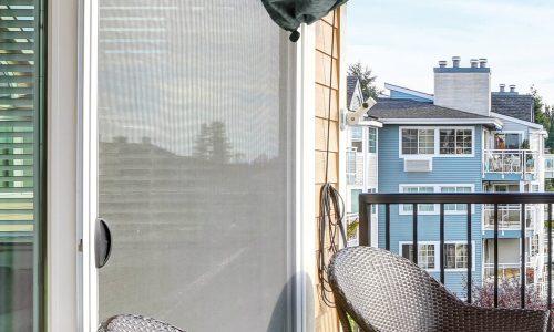 Waspinator on the balcony