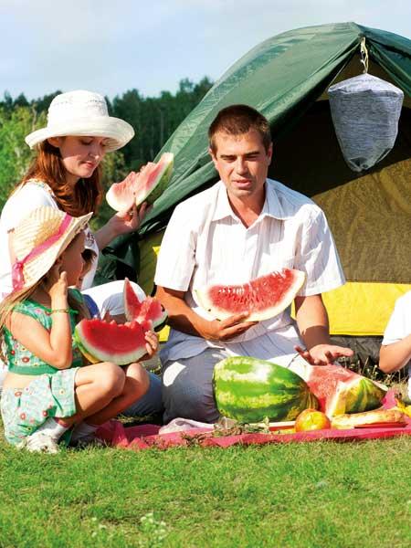 waspinator-camping