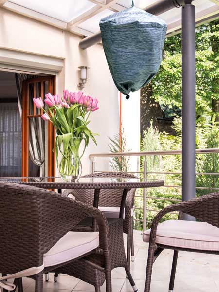 waspinator-on-the-patio
