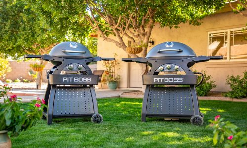 Pit Boss Sportsman 2 and 3 Burner Portable Gas Grill